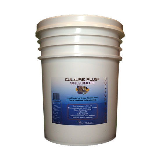 Culture Plus Saltwater 5gal